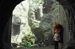 Aisha amando ver o aquário!!