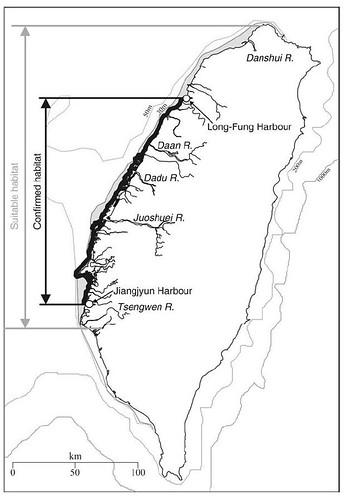 台灣白海豚已確認的分布範圍:苗栗龍鳳港到台南將軍港。合適範圍:淡水河口至曾文溪口,為無法切割的「重要棲息地」 。資料提供:陳昭倫