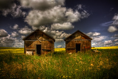 For rent: His and hers (JoLoLog) Tags: canada clouds hut alberta hdr canola lorien oldhut canolafields northeastofcalgary canonxsi