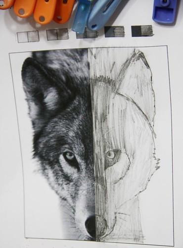 wolf symmetry Sprite