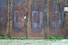 p17 (Das halbrunde Zimmer) Tags: germany deutschland dresden saxony dresdenfriedrichstadt suchspiel