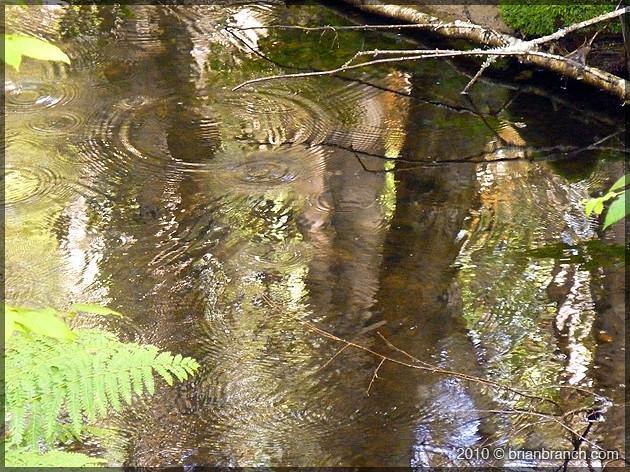 P1100893_ripples