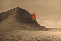 Hugh Hughes: Red Bird on a mountain