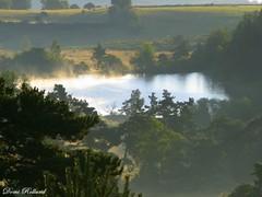 Silence (Domi Rolland ) Tags: france nature eau europe brume etang languedocroussillon aubrac lozère abigfave updatecollection theoriginalgoldseal