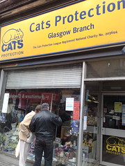 Cats Protection Charity Shopw Dumbarton Road Glasgow