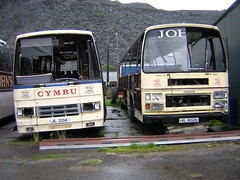 John's HIL 8026 and JIL 2214 (quicksilver coaches) Tags: tiger leopard supreme paramount leyland blaenauffestiniog plaxton ggt335t johnscoaches hil8026 jil2214 eww948y