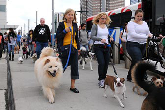 Caryl Shulman walks with Clancy from Pet Adoption League of New York (PAL)