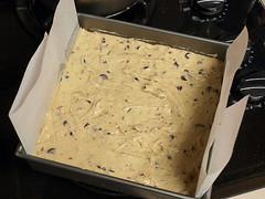Pecan Chocolate Chip Gooey Butter Cake