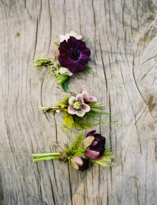 Flowerwild-February
