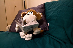 Is it turned on? (IM2_OCD) Tags: urban canon rebel monkey book evening littlerock pillow couch arkansas bobbyjack t2i