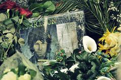 Rider on the storm (tiflosourtis) Tags: flowers paris france cemetery grave jimmorrison pèrelachaise thedoors d90 tiflosourtis