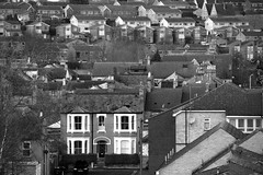 Little Boxes (Phil W Shirley) Tags: houses england bw bedford estate rooftops roofs housing 365 project365 42365 3652011 365the2011edition