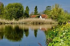 DSC05615 (hofsteej) Tags: middendelfland holland vlaardingervaart netherlands vlaardingsekade broekpolder april