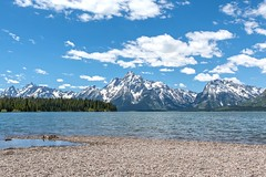 The Grand Tetons in Front of Jackson Lake (Camera Obscura 1975) Tags: yellowstone mountains grandtetons grandtetonmountains lake jacksonlake landscape