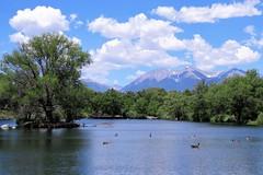 Summer Day (Patricia Henschen) Tags: colorado upperarkansasvalley arkansasriver sands lake mountains clouds sandslake statewildlifearea swa salida