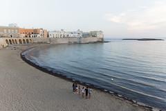 Gallipoli, lungomare con cigno (Angelo M™) Tags: gallipoli puglia lungomare mare spiaggia beach seaside sea landscape paesaggio tramonto sunset italia italy