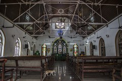 CSI Wesley Church (Arun Ramanan) Tags: madras mymadras mychennai chennai nammachennai church wesley religious heritage jesus historical vintage architecture wooden tamil broadway canon photography 5dmarkiii prayers candles cat life peace chairs 156years old oldest thechennaiphotowalk cpw travel travelphotography explore tamilnadutourism incredibleindia india
