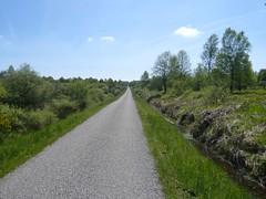 Hohes Venn (Tschechoslowakische Ausschussware) Tags: germany belgium hiking eifel wandern hohesvenn rur rureifel eifelsteig