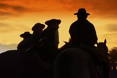 Gauchos orientales (Eduardo Amorim) Tags: sunset horses horse southamerica silhouette caballo uruguay cheval atardecer caballos tramonto sonnenuntergang prdosol cavalos prado silueta montevideo pferde cavalli cavallo cavalo gauchos pferd poniente coucherdesoleil hest hevonen chevaux gaucho entardecer crepsculo  silhueta amricadosul poente montevidu hst uruguai gacho  amriquedusud  umris gachos  sudamrica suramrica amricadelsur  sdamerika   americadelsud siluetta  americameridionale holidaysvacanzeurlaub semanacriolla semanacriolladelprado eduardoamorim iayayam yamaiay semanacriolladelprado2010