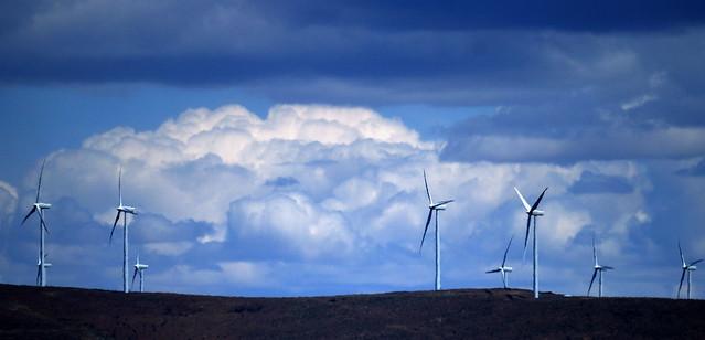 2009-07-08: Windmill Farm in Eastern Washington