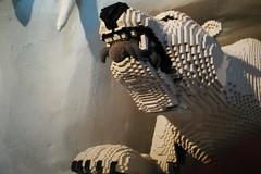 Dust Mite @ Legoland