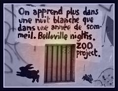 Free-your-mind (Emmanuelle Gerun) Tags: blackandwhite streetart paris color rabbit message noiretblanc belleville tag couleur lapin graphique zooproject