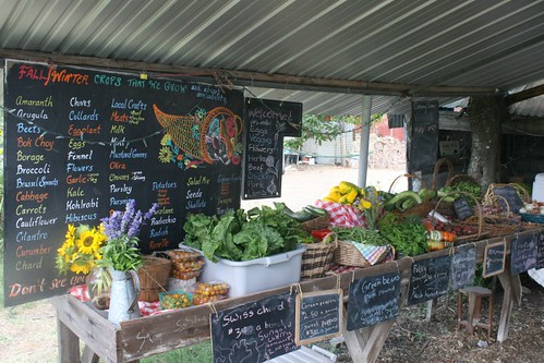 June farm stand