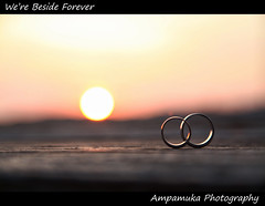 We're Beside Forever (Couple White Gold Rings At SunSet) /  () (AmpamukA) Tags: camera sunset 2 sky white love beautiful composition canon gold couple mark pair we ring ii captain thai romantic 5d forever hook koh trad beside interesection kood narak             ampamuka  tripleniceshot  toyallythailand