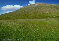 monte Vettore versante umbro_3502 (c) Tags: nature landscape natura marche paesaggio umbria castelluccio appennini sibillini montevettore