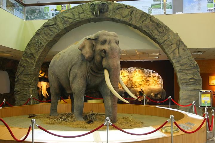 台北市立動物園台灣動物教育館0033