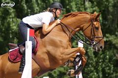 DSC00771-s (Myprofe) Tags: madrid horse club caballo salto countryclub equestrian horsejumping hipica concursodesaltos ccvm madridcountryclub