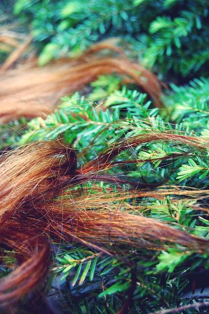 hair/tree.