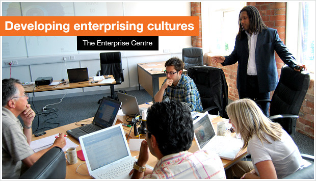 Developing Enterprising Cultures