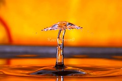 The very rare water mushroom  Orange period. (kees straver (will be back online soon friends)) Tags: orange macro water drops interesting unique soccer flash drop explore splash waterdrops liquid voetbal highspeed highspeedphotography strobist canoneos5dmarkii waterdrops keesstraver bestofmywinners doublesplash collidinginmidair explodingliquid watermushroom