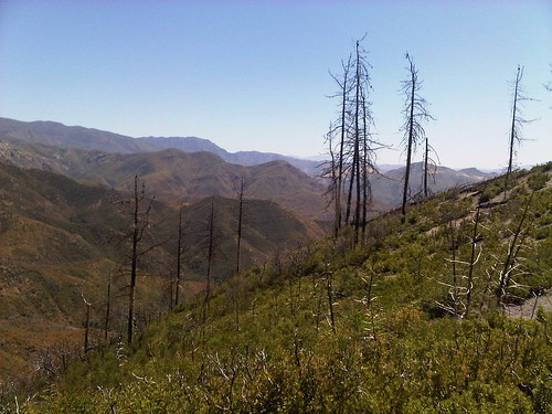 Upper Oso Trail (Los Padres National Forrest) in CA