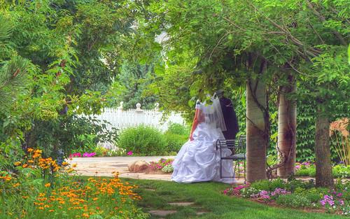 A bridal glimpse