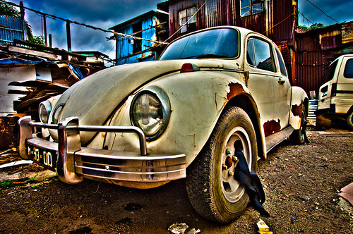 White Beetle HDR