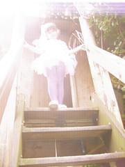 magical garden fairy (Fairytrade) Tags: wings clothes fairy dressingup faery fancydress organza faerywings exoticgarden