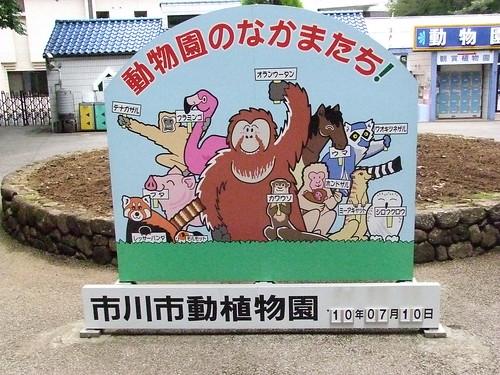 動物園のなかまたち!/Companions in Zoo !