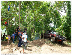 Nunuk Ragang Novice 4x4 Challenge - Kids climbing tree (sam4605) Tags: tree kids forest ed offroad 4x4 4wd olympus malaysia borneo toyota e3 70300mm sabah kayu novice hilux ranau zd sabahborneo 1260mm nunukragang ln106 nunukragang4x4challenge