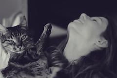 Bitch, get the fuck off. (autom4tica) Tags: girl cat sara tabby thor