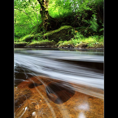 The calm pool - Buchanty (angus clyne) Tags: bridge fish colour tree green pool rock forest river flow scotland waterfall moss long exposure perthshire deep scottish calm glen swirl mossy swirly shalow colorphotoaward