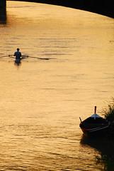 Remi in barca (Jack Denny) Tags: gold nikon barca canoe firenze arno remi canoa oro canottaggio d80