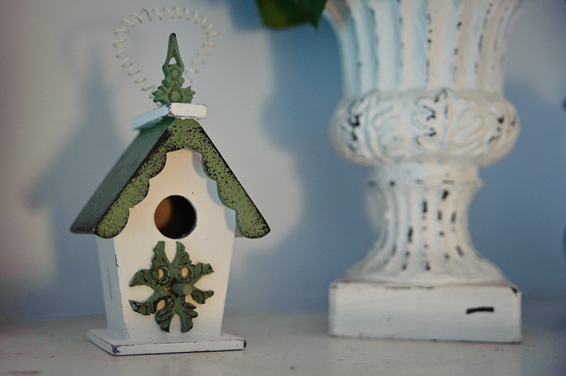 Day 278- Bird House