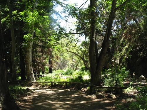 SB Botanic Gardens