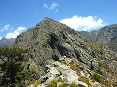 Le sentier de Caprunale : Bocca di Caprunale et la crête vers Custole-Silvastriccia