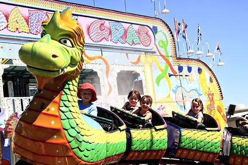 marion county fair 018
