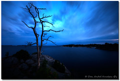 wooden persistence (Dan André Photography) Tags: longexposure sunset sky seascape tree water silhouette norway night canon movement view hdr sandefjord sigma1020mm standingalone nd8 canon450d