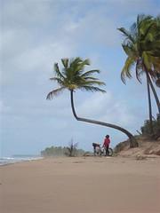 Praia da Bombaça, Barra Grande - BA