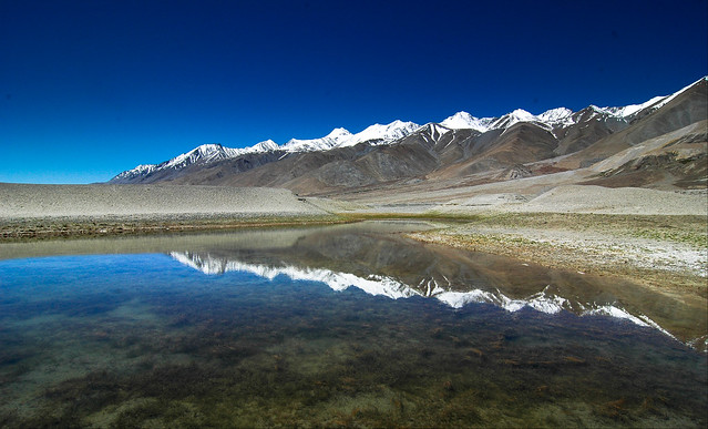 Pangong reflects